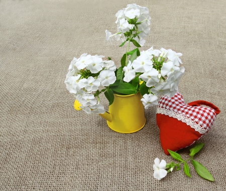 wateringcan: Bouquet from white phloxes in a yellow watering-can and red heart on a canvas table