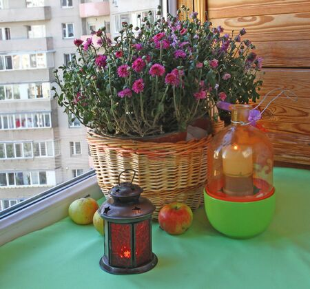 An autumn mood of chrysanthemums, apples and a lantern photo