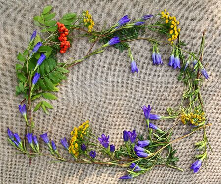 consuetude: A frame from rowan, gentian and tansy on canvas Stock Photo