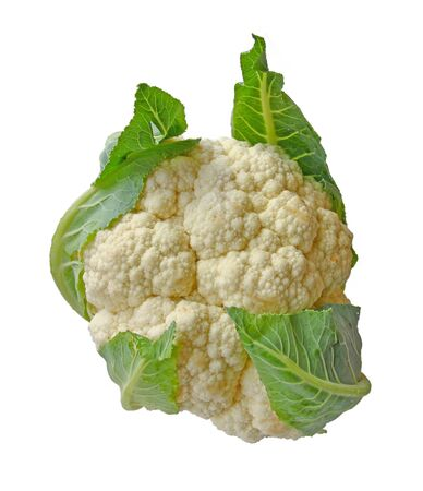head of cauliflower: head of cauliflower it is isolated on a white background Stock Photo