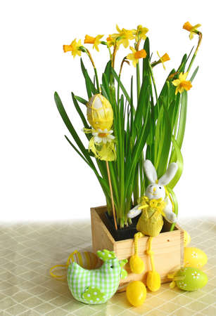 Narcissuses with an easters rabbit and egg on a white background are isolated photo