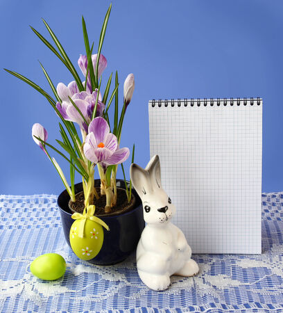 Striped white-violet crocuses  Pickwick and easters eggs on a background the empty page of notebook for text. Products of mass production photo