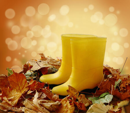 Two yellow gumboots for work in a garden standing in fallen  leaves