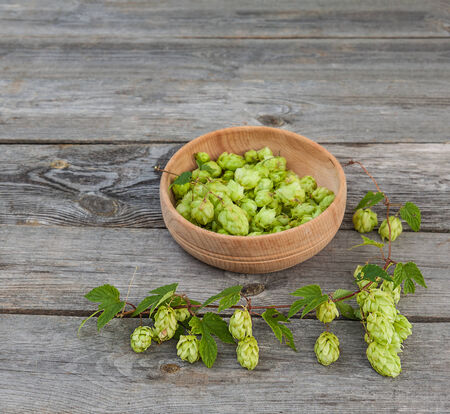 ingredients tap: Harvest of hops on a wooden table