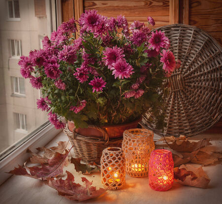 Bush of purple chrysanthemum in a basket and oak leaves next to the flashlights on a balcony photo