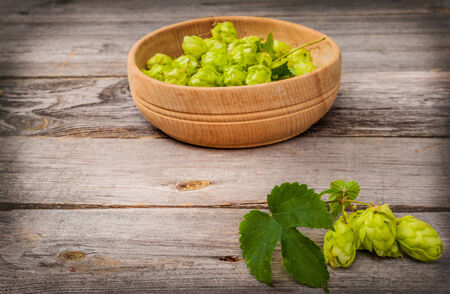 intoxicating: Harvest of hops on a wooden table