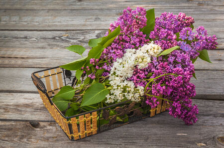 Basket with a branch of lilac  on a wooden table on a sunny spring day photo