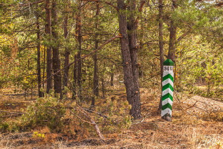 quarterly: Autumn Landscape with a wooden pole, indicating the forest districts Stock Photo
