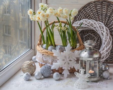candleholder: New Year and Christmas window decoration with blooming daffodils and Christmas decorations