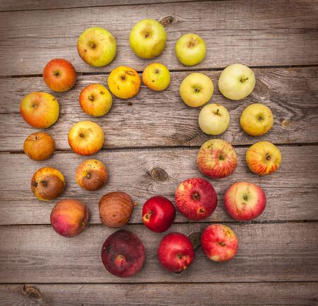 transition: Color transition of fruits on wooden background