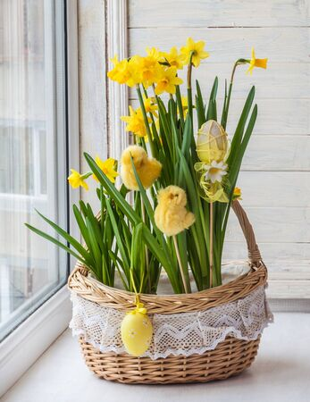 forcing: Easter decoration sill basket with daffodils and stickers chickens and eggs