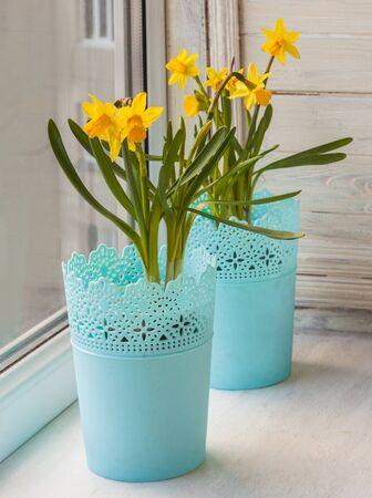 windowsill: Yellow daffodils in a beautiful pots on a windowsill window