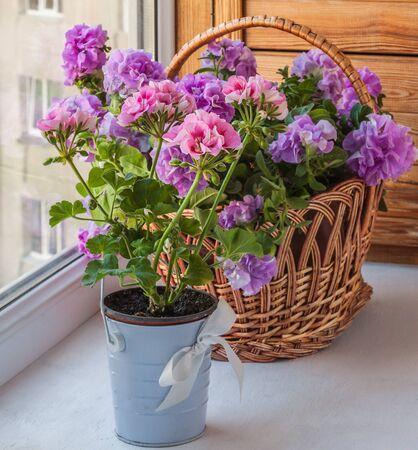 balcony window: Petunia and pelargonium in a baskets on the balcony window Stock Photo