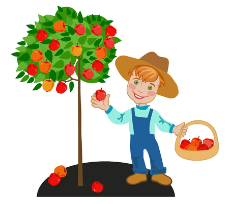Happy child gardener collects red apples
