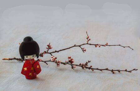 japanese kimono: The kokeshi  doll in the Japanese kimono and a sprig of cherry blossoms. The concept of hanami either contemplation Stock Photo
