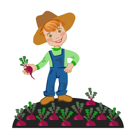 beets: Boy farmer grows beets in the garden