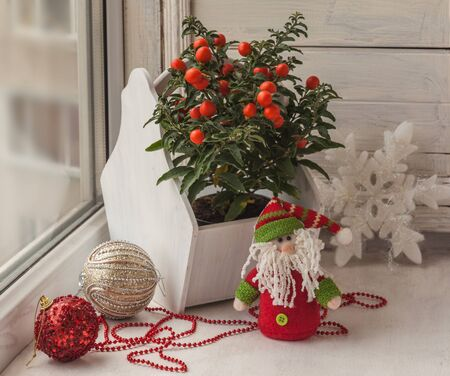nightshade: Window decor for the holiday of St. Nicholas with toys and nightshade (mass-produced)