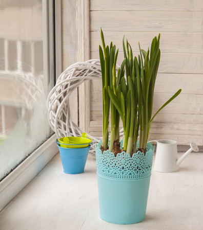 balcony window: Yellow daffodils in a turquoise pot and decorative watering cans and buckets on the balcony window Stock Photo