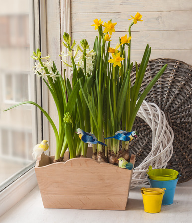 decorative balcony: Yellow daffodils and white hyacinths in the balcony boxes decorated decorative birds on a stick Stock Photo