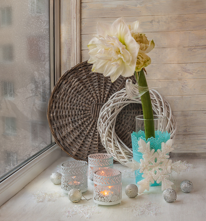 hippeastrum flower: Flower white double Hippeastrum on winter window with winter decorations