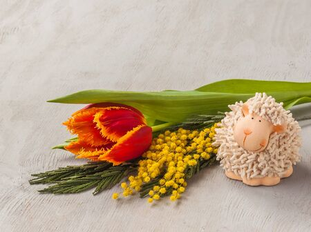yeanling: Easter background with mimosa,  fringed  tulip and lamb figurine (mass produced) Stock Photo