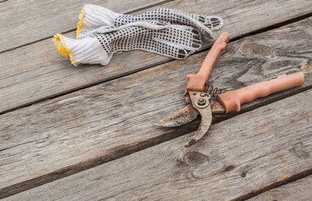 gardening gloves: Garden pruner and gardening gloves on vintage wood board agriculture concept.