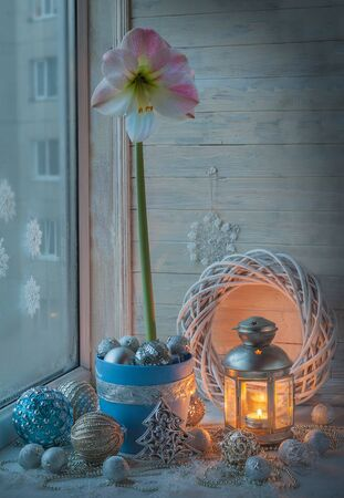 magic lily: Pink hippeastrum next to a burning candle on o the window. Eve Advent