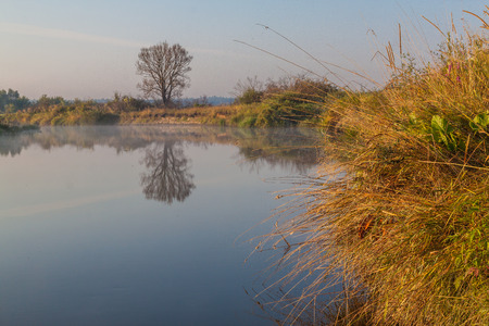 auroral: Foggy sunrise on a small river in Polesie