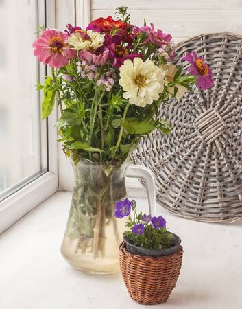 Bouquet  of zinnias at the window in a glass jar and  decorative  watering Stock Photo