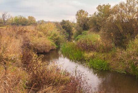 Overcast autumn morning on a small river in Polesie in Ukraine