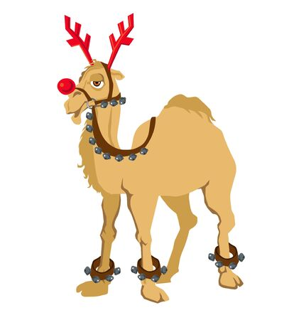Cheerful camel in a deer costume from a Santa Claus harness on a white background isolated