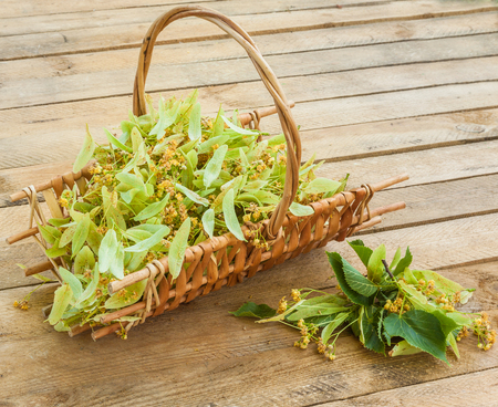 Flowers of a linden in basket on a wooden table Foto de archivo - 112648174