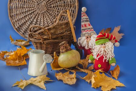 Bulb of hippeastrum (amarilis) decorative watering can and two toy gnomes (mass production) on a blue background. Concept