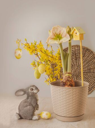 """Concept of spring - blooming hippeastrum (amaryllis) """"Princes Claire"""" next to figure of rabbit (mass production) on background of flowering Forsythia branches and Easter eggs Banque d'images"""