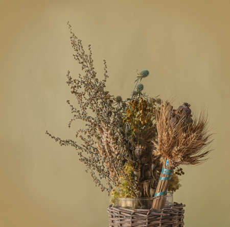 Bouquet of dry herbs and poppy heads, traditional for the day of memory of the martyrs of the Maccabees. Фото со стока