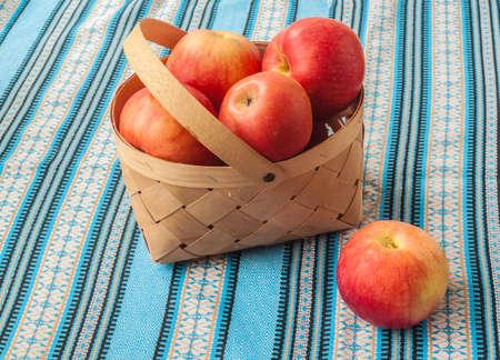 Harvest red apples Idared in a basket