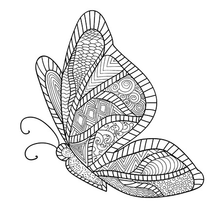 butterfly: Detailed ornamental sketch of a moth,Hand drawn zentangle for adult anti stress. Coloring page with high details isolated on white background. Zentangle pattern for relax and meditation.
