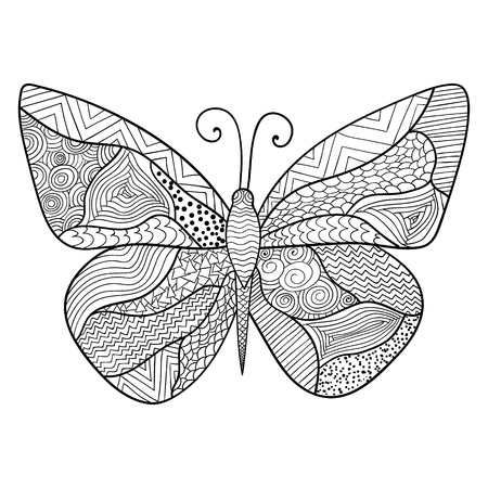 entomological: Detailed ornamental sketch of a butterfly,Hand drawn zentangle for adult anti stress. Coloring page with high details isolated on white background. Zentangle pattern for relax and meditation.