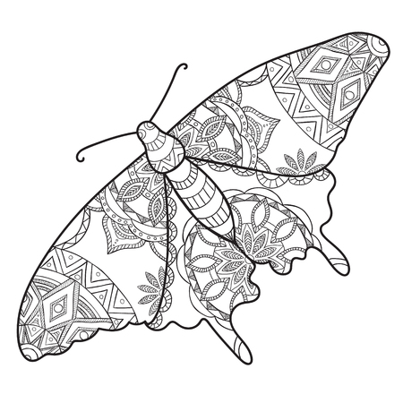 entomological: Detailed ornamental sketch of a moth,Hand drawn for adult anti stress. Coloring page with high details isolated on white background. Pattern for relax and meditation. Illustration