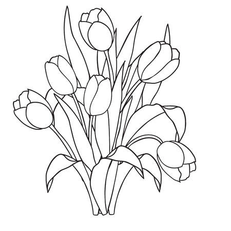 Tulips , flowers, ornamental black and white coloring pages.vector illustration doodle