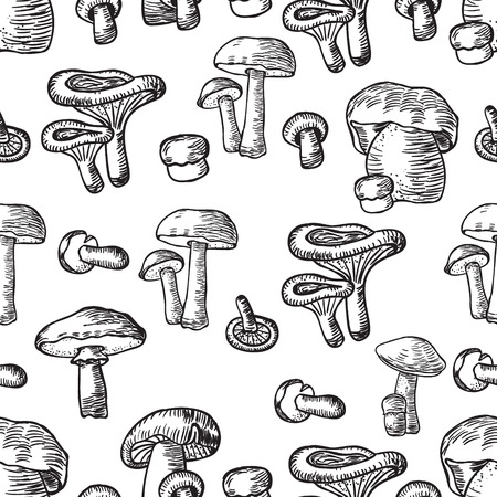 compilation: Seamless mushrooms set. Compilation of illustrations of mushrooms collected in the forest