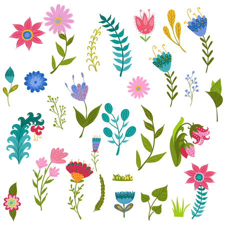set vector colorful illustration with beautiful flowers. Illustration