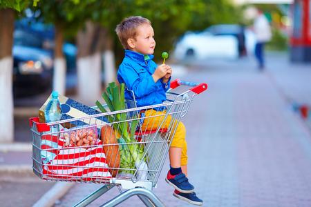 viveres: ni�o en carro lleno de productos alimenticios despu�s de las compras