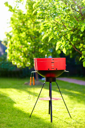 garden barbecue: barbecue grill on backyard party