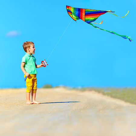 playing field: happy boy playing with kite on summer field
