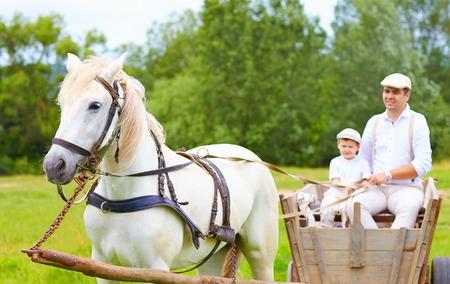 horse cart: farmer family riding a horse cart  focus on horse