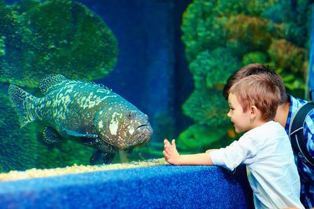 gelukkig kind te communiceren met vissen in oceanarium