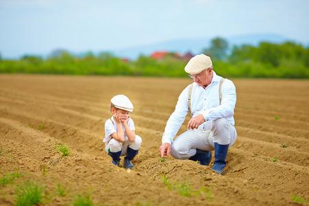 Los agricultores familiares en su crecimiento pista planta de cheques Foto de archivo - 39562003