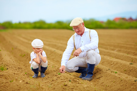Farmers family on their land checking plant growth