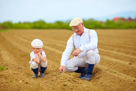 crecimiento planta: Los agricultores familiares en su crecimiento pista planta de cheques Foto de archivo